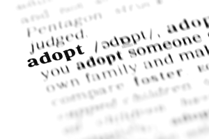 adopt (the dictionary project)